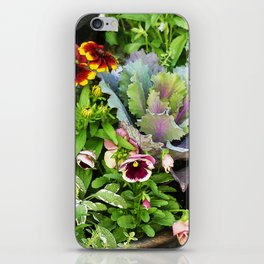 Potted Fall Flowers iPhone Skin