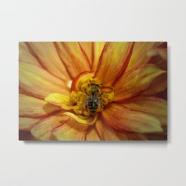 bee Grounded Metal Print