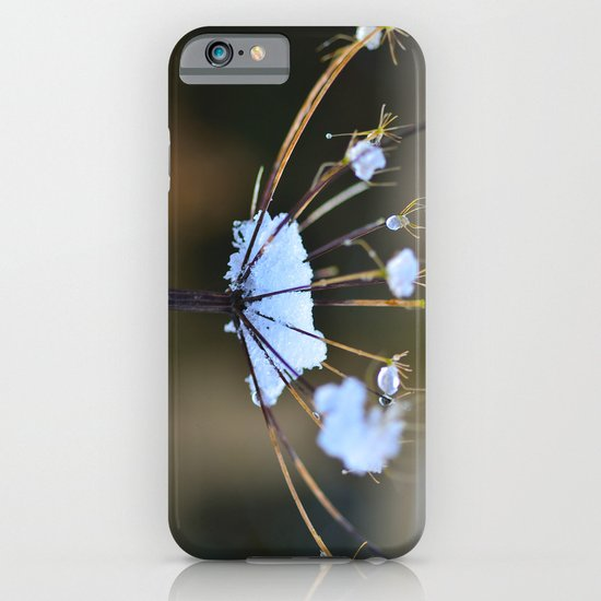 Cow Parsley In the Snow iPhone & iPod Case