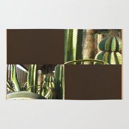 Cactus Garden Blank Q3F0 Rug