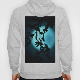 Heavenly Vines in Teal Hoody