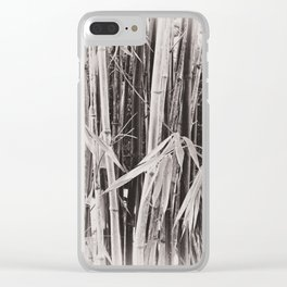 Beautiful bamboo in sepia Clear iPhone Case