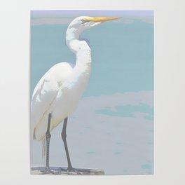 GARZA SOFT COLOR BIRD Poster