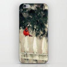 Snowy Day Cardinal iPhone & iPod Skin