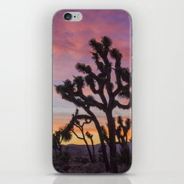 Colorful Sunset in Joshua Tree National Park iPhone Skin