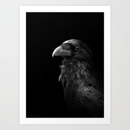 Crows Smile Art Print
