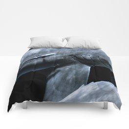 Shark Crossing Comforters