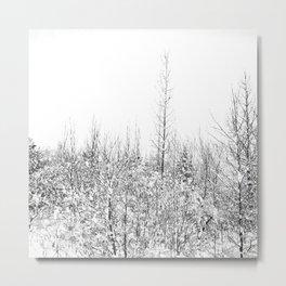 Winterland Metal Print