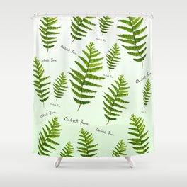 Ostrich fern Shower Curtain