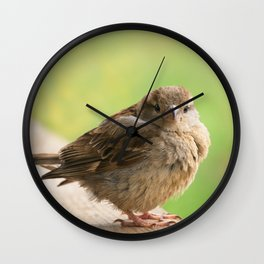 Baby Bird Wall Clock