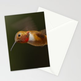 Rufous Stationery Cards