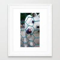 puppy Framed Art Prints featuring Puppy by Elizabeth Chung