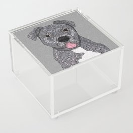 Junior Acrylic Box