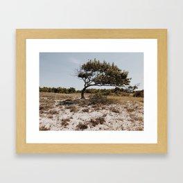 Rustic Tree Framed Art Print