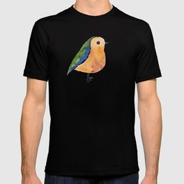 Has Feathers T-shirt