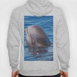 Cute wild pilot whale baby Hoody