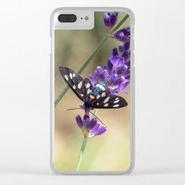 Amata Phagea on lavender Clear iPhone Case