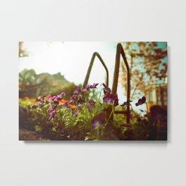Violet Flowers from below Metal Print