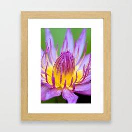 Floral Greeting Framed Art Print