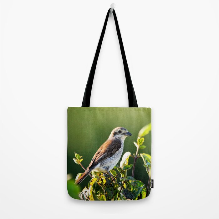One Bird in the Bush (just one) Tote Bag