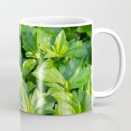 A roach's journey Coffee Mug