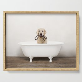 Golden Retriever in a Vintage Bathtub Serving Tray
