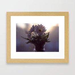 Daisy's Framed Art Print