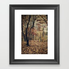 Vintage Autumn Framed Art Print