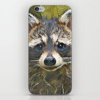 racoon iPhone & iPod Skins featuring Little Racoon by Gene S Morgan