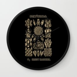 """Bryozoa"" from ""Art Forms of Nature"" by Ernst Haeckel Wall Clock"