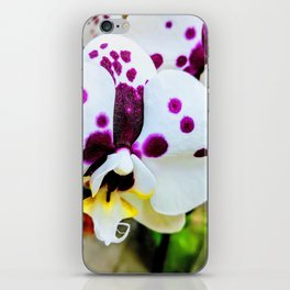 Spotted Orchids iPhone Skin