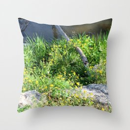 Wild Flowers by the Stream Throw Pillow