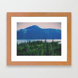 Beluga Point Framed Art Print