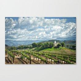 Vineyards, Temecula, CA Canvas Print