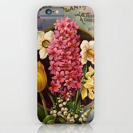 051 Hyacinthus Narcissus Tulips2 iPhone Case