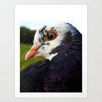 pigeon Art Prints featuring Pigeon by Angelandspot