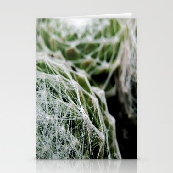 Leslie the Cactus  Stationery Cards
