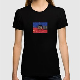 Old Vintage Acoustic Guitar with Haitian Flag T-shirt