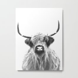 Black and White Highland Cow Portrait Metal Print