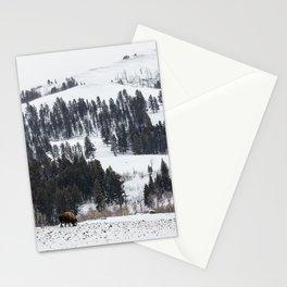Specimen Ridge - Yellowstone National Park Stationery Cards