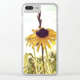 Black Eyed Susans Clear iPhone Case