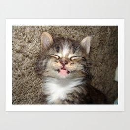 Kitten Smile Art Print