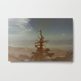From Way Up Here Metal Print