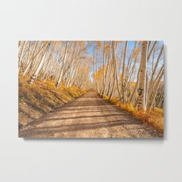 FALL ROAD - COLORADO ROCKY MOUNTAIN AUTUMN LANDSCAPE PHOTOGRAPHY PRINT Metal Print