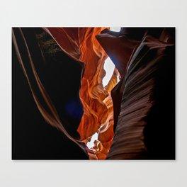 Antelope leap Canvas Print