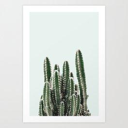 Blue Sky Cactus Art Print