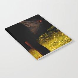 Foreground Notebook