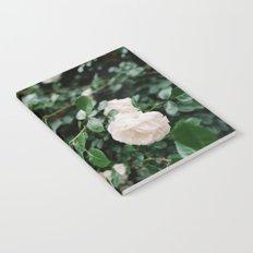 film + flowers + brooklyn Notebook