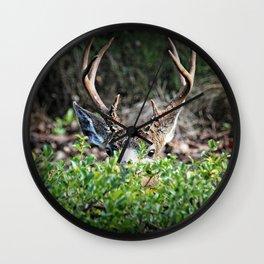 Peeking Buck Wall Clock