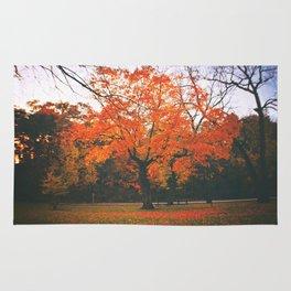 Bright Orange Fall Tree Rug